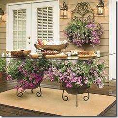 Rejas macetas y plantas fundaci ilersis - Soportes para colgar macetas ...