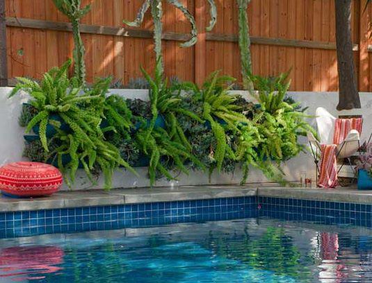 Crecer en los bolsillos otro jard n vertical fundaci for Como decorar un patio con pileta