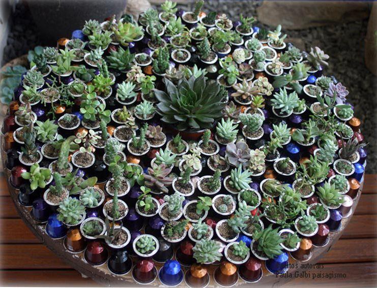 macetas yogures y capsulas de café  Jardindecora flores y plantas