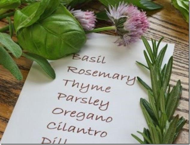 Un mini jard n de hierbas arom ticas fundaci ilersis for Plantas aromaticas para cocinar