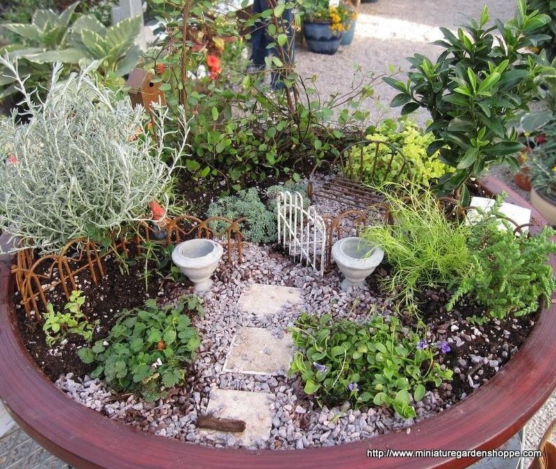 Jardines en miniatura fundaci ilersis for Jardines en miniatura
