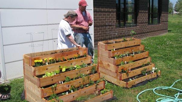 Un mini huerto urbano jardindecora flores y plantas - Mini huerto urbano ...