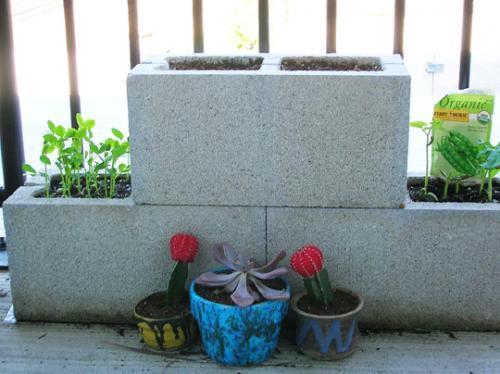 Usar bloques de hormig n como macetas jardindecora for Bloques cemento para jardin