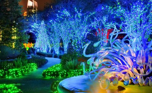 Un jard n iluminado para navidad fundaci ilersis for Iluminacion arboles jardin