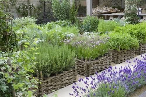 Resultado de imagen de jardineras de aromaticas