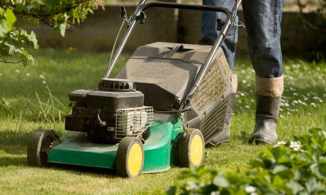 Herramientas para trabajar en el jard n fundaci ilersis for Herramientas para el jardin
