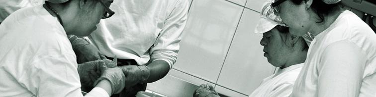 Inserción laboral personas con discapacidad- ILERSIS
