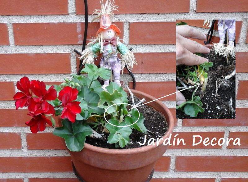 Como decorar un jard n con poco dinero fundaci ilersis - Como decorar un salon con poco dinero ...
