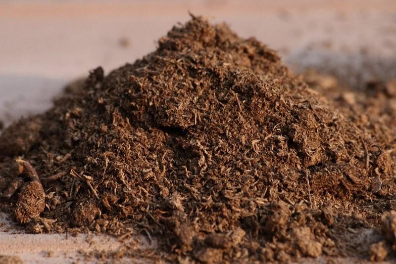 mejorar el suelo del jardín, turba